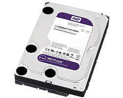 Western Digital Purple 1TB, S-ATA3, 5400rpm, 64MB cache (WD10PURZ)